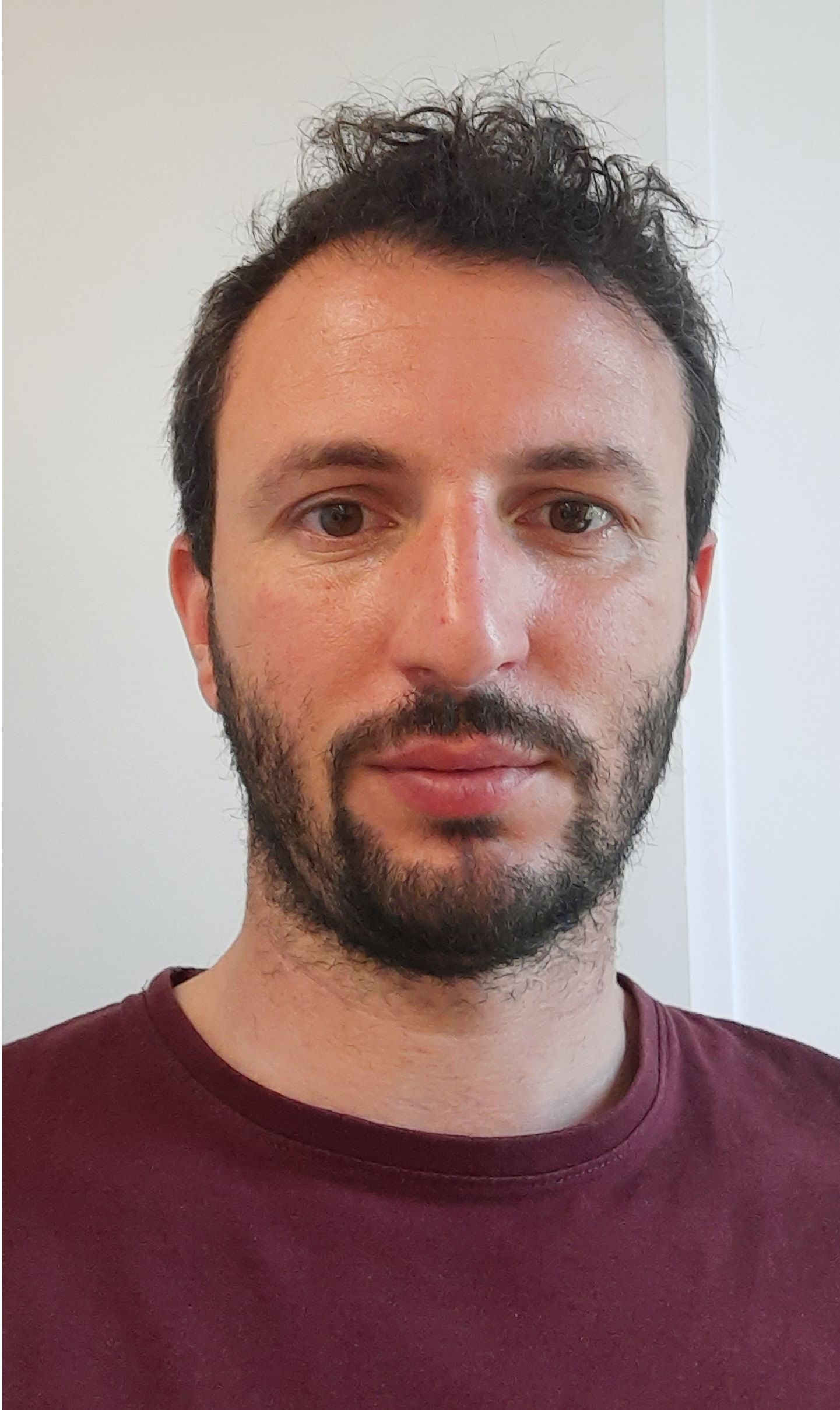 Diego S. Paini, BSc